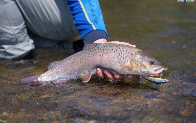 Сихотэ-Алинь: рыбалка в тигрином краю (Часть 1)