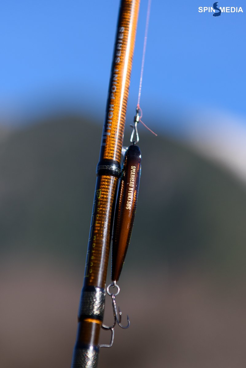Trout-1234