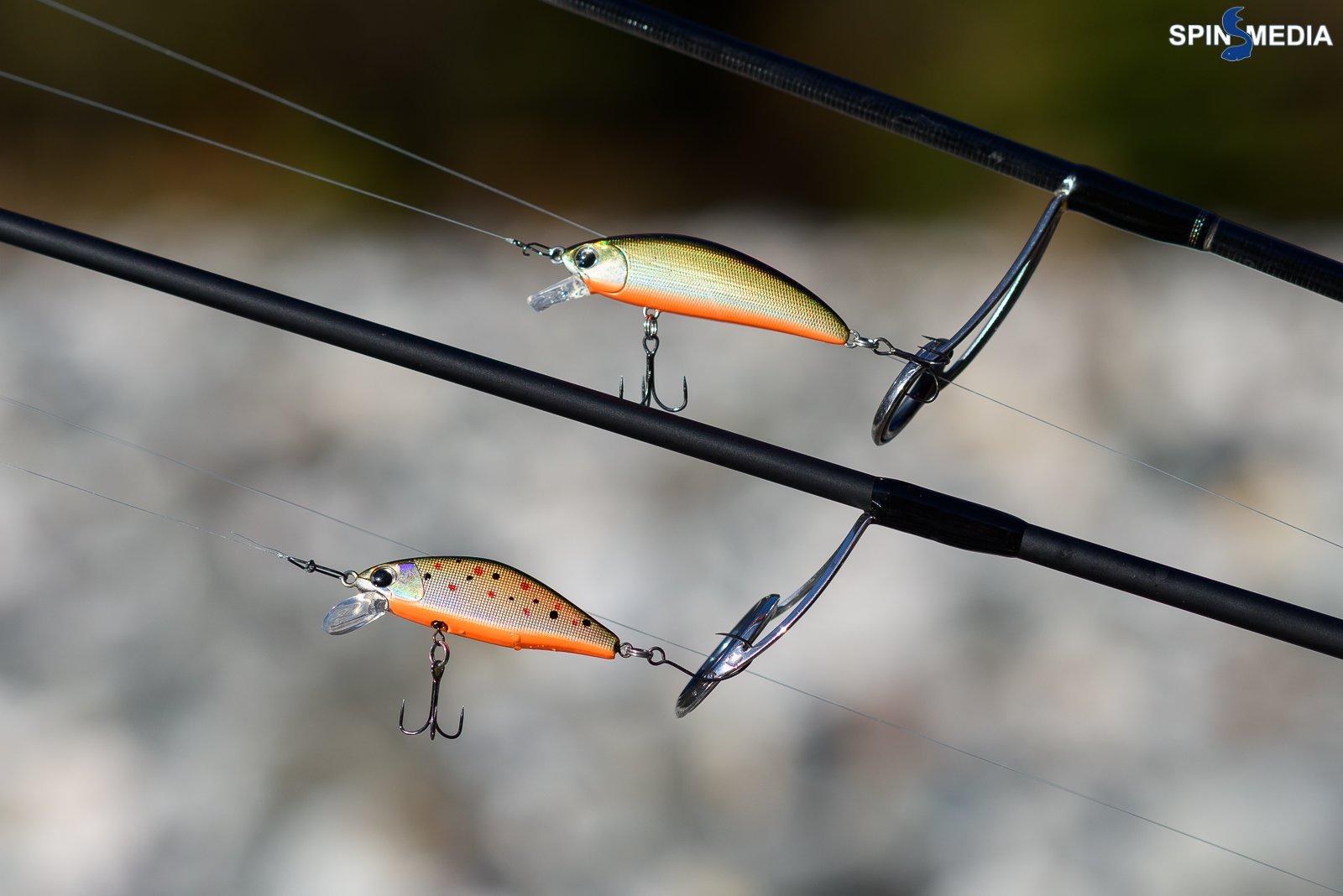Trout-3189