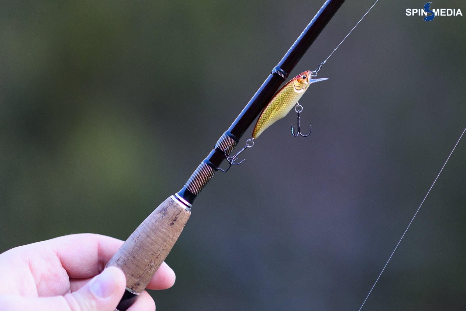 Trout-3485